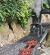 1 shay going into bush tunnel.jpg