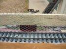 Wire netting close up.JPG