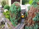 Pruning & weeding (10).JPG